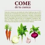 #FEVINO 2014 El Festival del Vino Mexicano  2