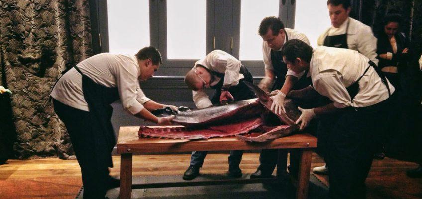 El ronqueo del atún, un arte milenario japonés 1